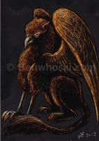 ACEO Scratchboard Gryphon by benwhoski