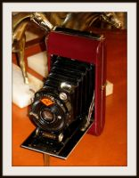 Agfa Standard folding camera by FallisPhoto