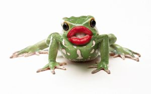 Kiss That Frog by grabthar