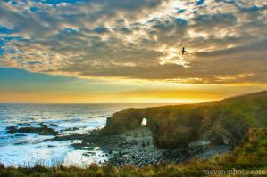 Northumberland coast by brijome