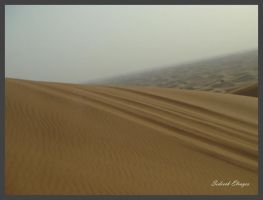 Track in the sand dune by Sedeeck