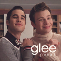 GLEE - Perfect by MontanaLyCora