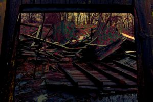 Abandoned Farm Series 3 by PinkPanther21