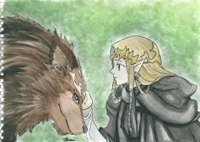 Twilight Princess by xxally7xx