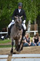 Pony dressage stock 3 by BRls-love-is-MY-Live