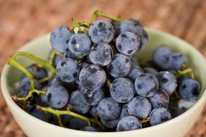 Concord Grapes by froggynaan