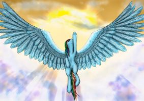 MLP: Rainbow Dash by Alcor90