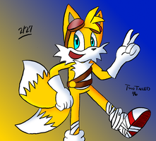 Tails being Tails by Daily-Needs
