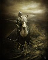 Le chevalier blesse by PSD-Graphics