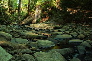 Creek HDR by AloriaTheZombie