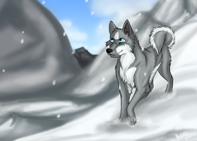 On the Mountains by ArcticHuskie