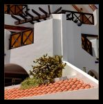 Architecture And Nature - Tenerife by skarzynscy