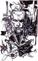 Raiden Yoji Shinkawa (Cyborg Ninja Version) by Thestickibear