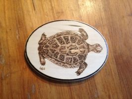 Pyro Turtle by H20dog