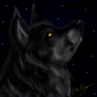3rd Time Using SAI: Grey Wolf by ScottishRedWolf