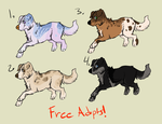 Free adoptables! - CLOSED - by PointAdoptsforyou