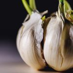Garlic by JordanRobin