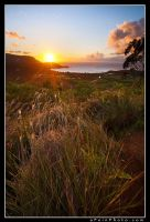 Hanalei Bay Dreams by aFeinPhoto-com