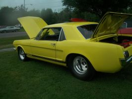 (1966) Ford Mustang GT500 by auroraTerra