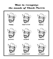 The moods of Chuck Norris by catOutOfHell