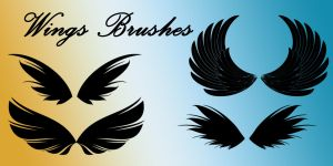 Wings Brushes by SuicideOmen