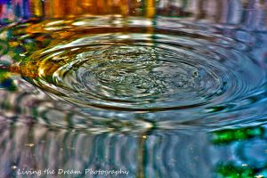 Turtlle Ripples by firegal01