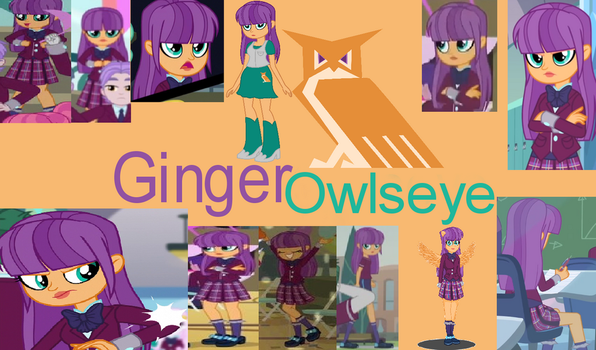 Ginger Owlseye Collage by Shafty817