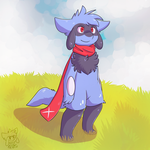10 Year Old Zander The Riolu by Zander-The-Artist