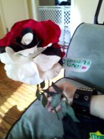 Pokeball rose by The-TraveIing-Itch