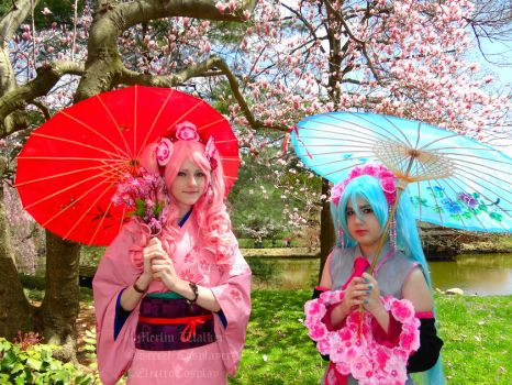 Traditional Sakura Miku and Blooming Miku by the-timelord-Doctor