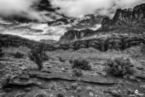 Red Rock Paradise BW by mjohanson