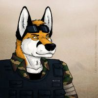 Colonel Fox by Illusir
