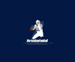 Horseshoe Football by 1madhatter