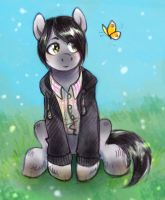 Pony and butterfly by Kethavel