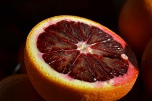 Blood Orange by Yoyoshi24