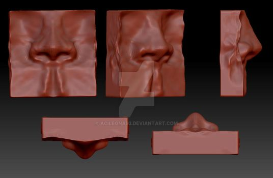 Zbrush - 3D nose assignment by Acilegna93