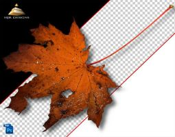 AutumnLeaf 4 by HJR-Designs