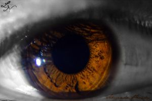 Eye Project: Zoned (re-shoot) by ShineeDragon