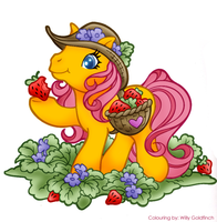 My little pony by willy-goldfinch