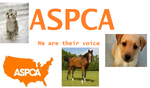 ASPCA by veronicle