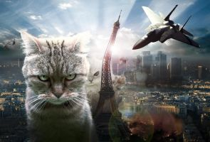 Cats attack by Xiaoyu85ve