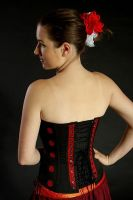 Corset from sari II. by Anique-Miree