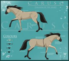 New Caruso Reference Sheet by Equinus