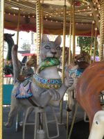 Carousel -Cat by rachellafranchistock