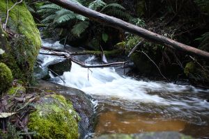 Waterfall Stock 1 by CNStock