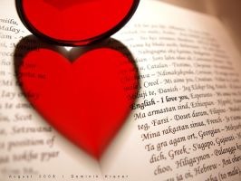 book heart by dkraner