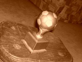 soccer trophy by beauty-to-pain