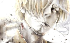Sanji by LorenaMGrim