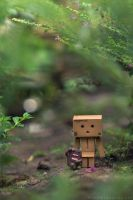 Danbo and Domo by inzanenewbie