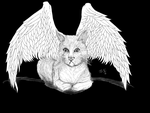 Cat with Wings (Black BG) by TlalocQuetzalcoatl
